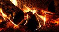 cum să vă încălziți cu lemne